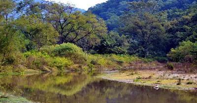 विश्व प्रसिद्ध काॅर्बेट नेशनल पार्क जैवविविधता के मामले में विख्यात है।
